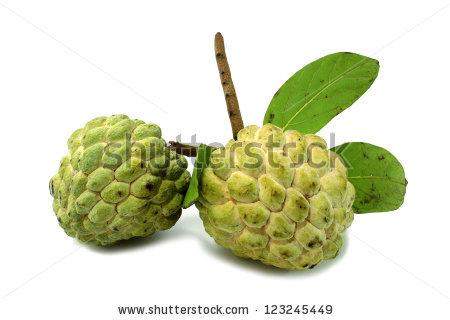 Custard Apple Fruit Stock Photo 53546068.