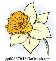Daffodil Clip Art.