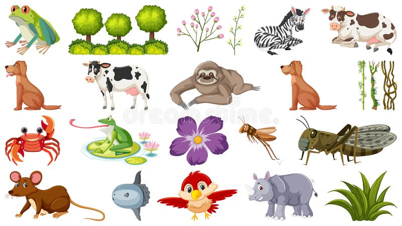 Different Animals Stock Illustrations.