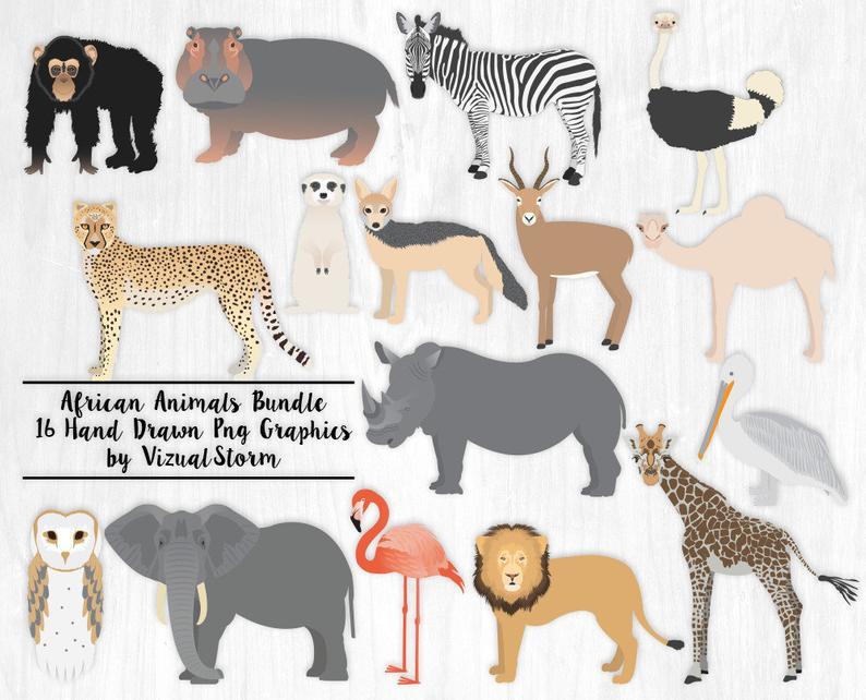 African Animal Clipart Bundle Safari Animal Graphics African Wildlife  Illustration Jungle Animals Zoo Animals Clip Art Wild Animal Scrapbook.