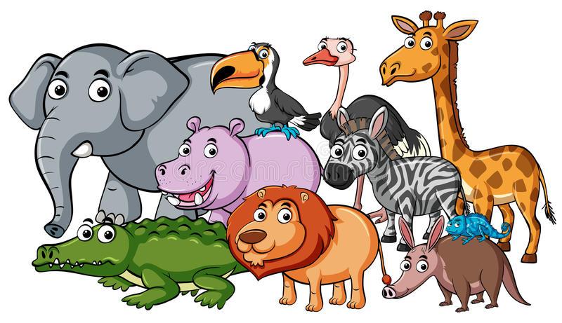 Different Animals Stock Illustrations.