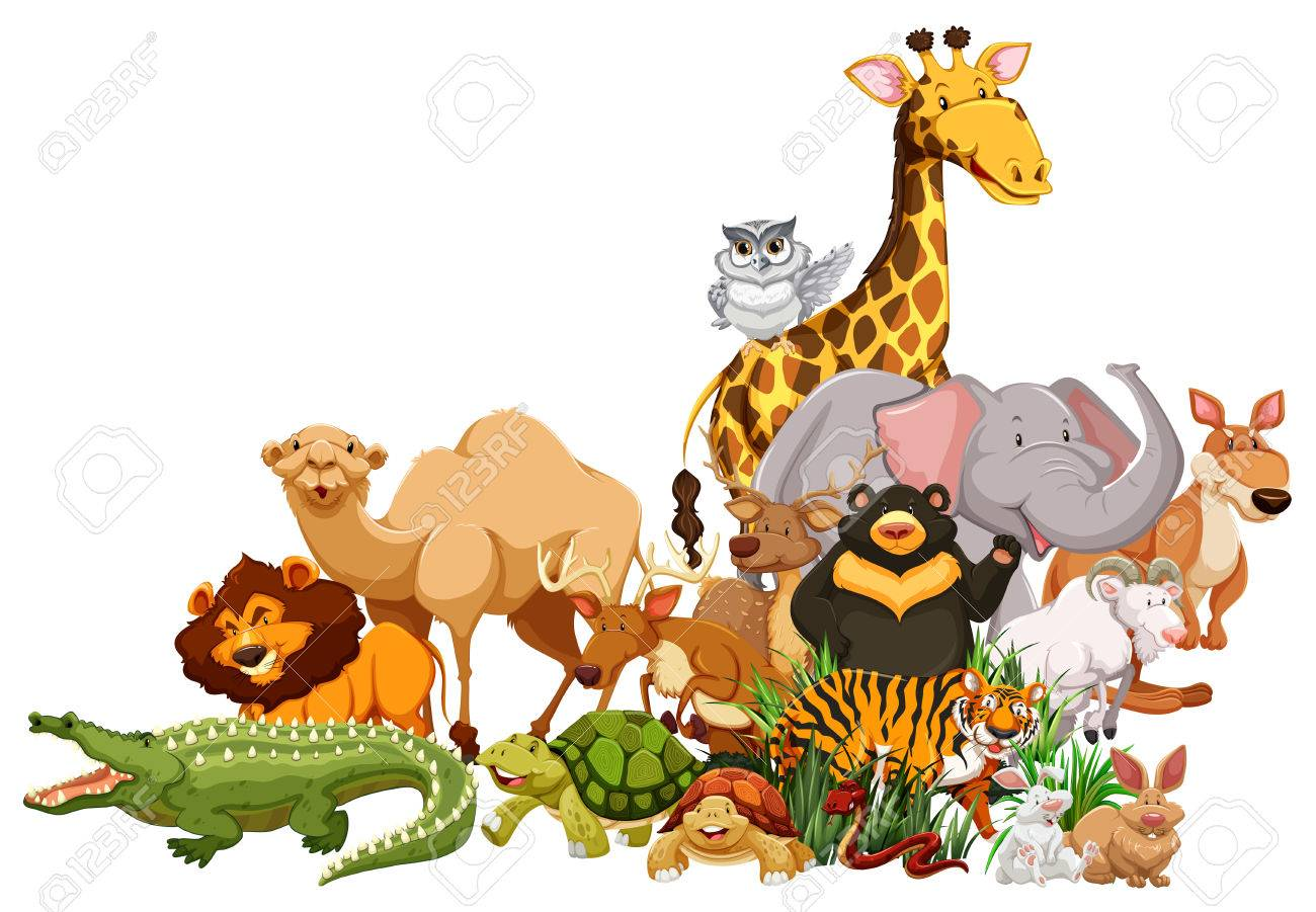 Different types of wild animals together illustration.