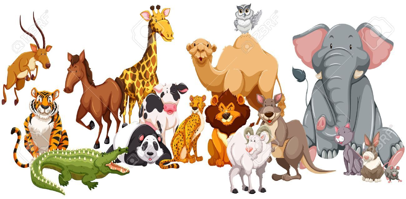 Different animals clipart 9 » Clipart Portal.