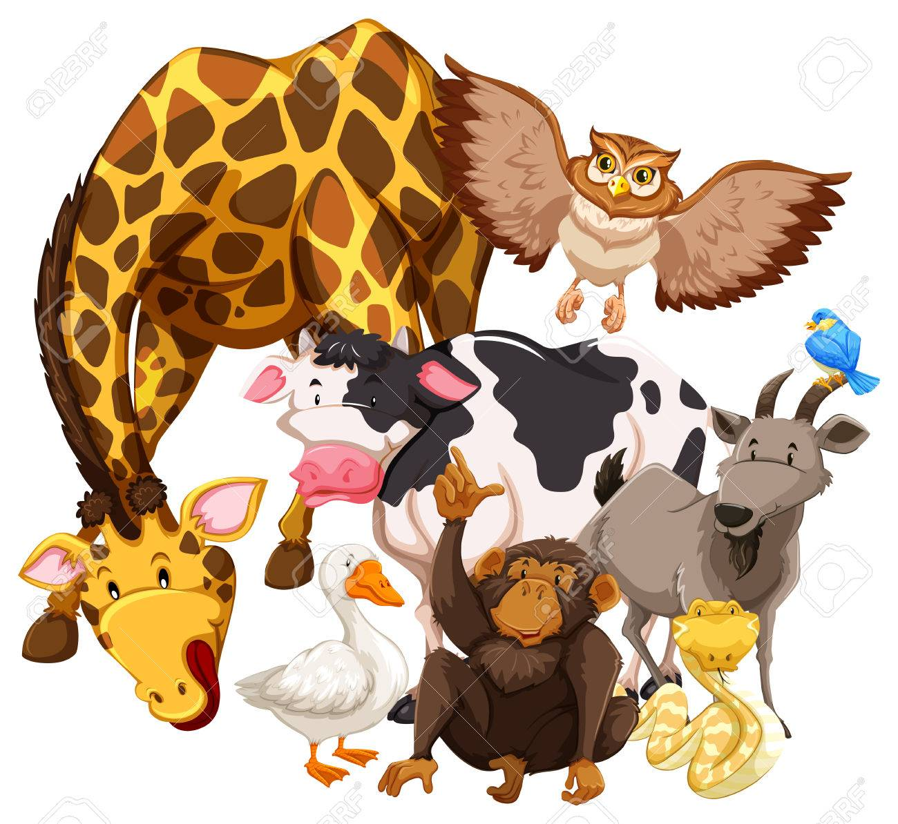 Different kind of animals living together.