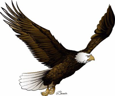 Soaring Eagles Clipart.