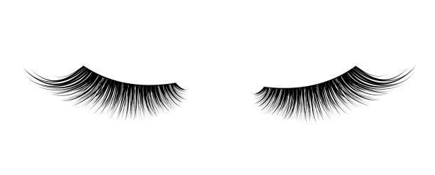 Best Eyelash Illustrations, Royalty.