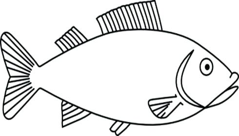 Free fish outline pictures download clip art on jpg.