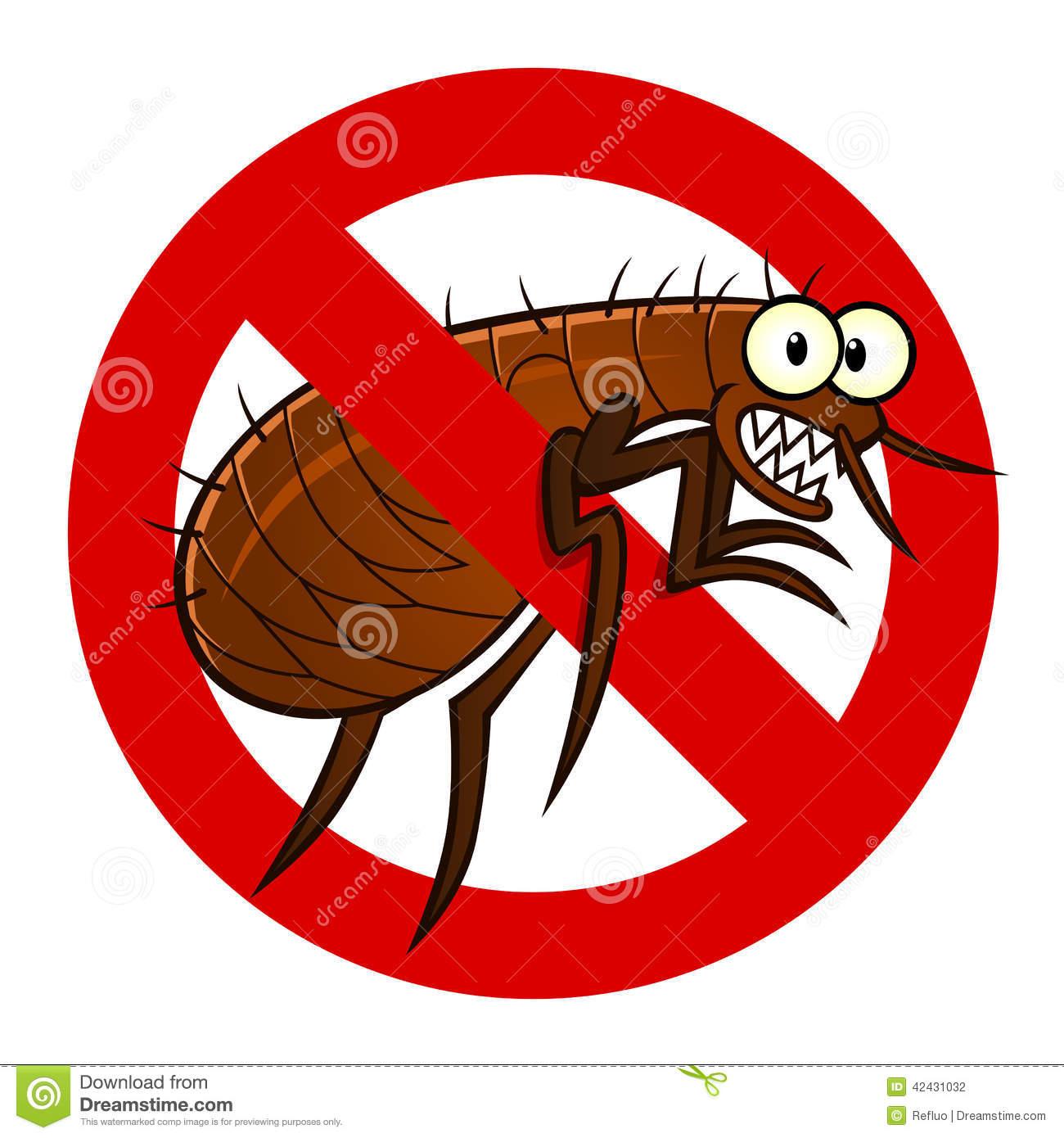 Showing post & media for Cartoon fleas.