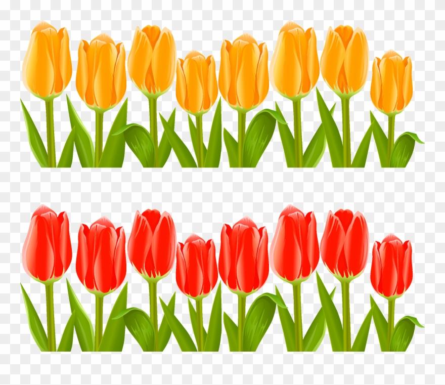 Indira Gandhi Memorial Tulip Garden Flower Clip Art.