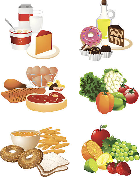 Best Food Pyramid Illustrations, Royalty.