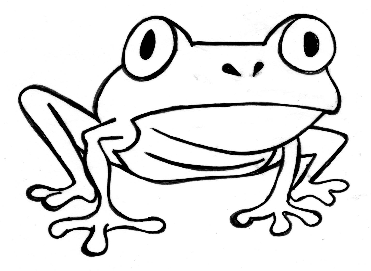Frog Outline.