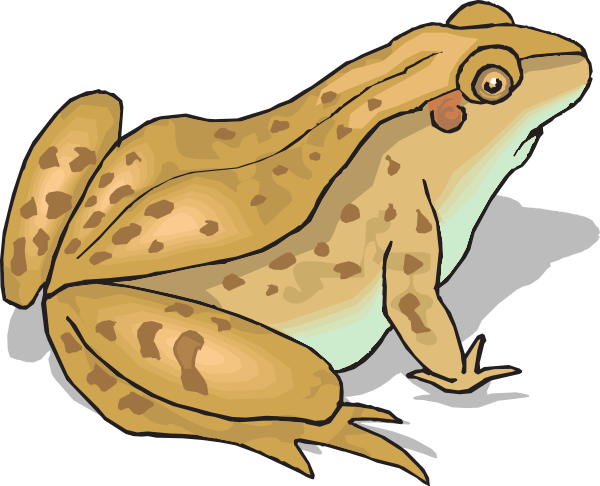 Clipart Of Frogs And Toads.