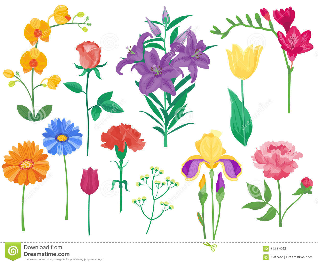 Cartoon Petal Vintage Floral Vector Bouquet Garden Flower.