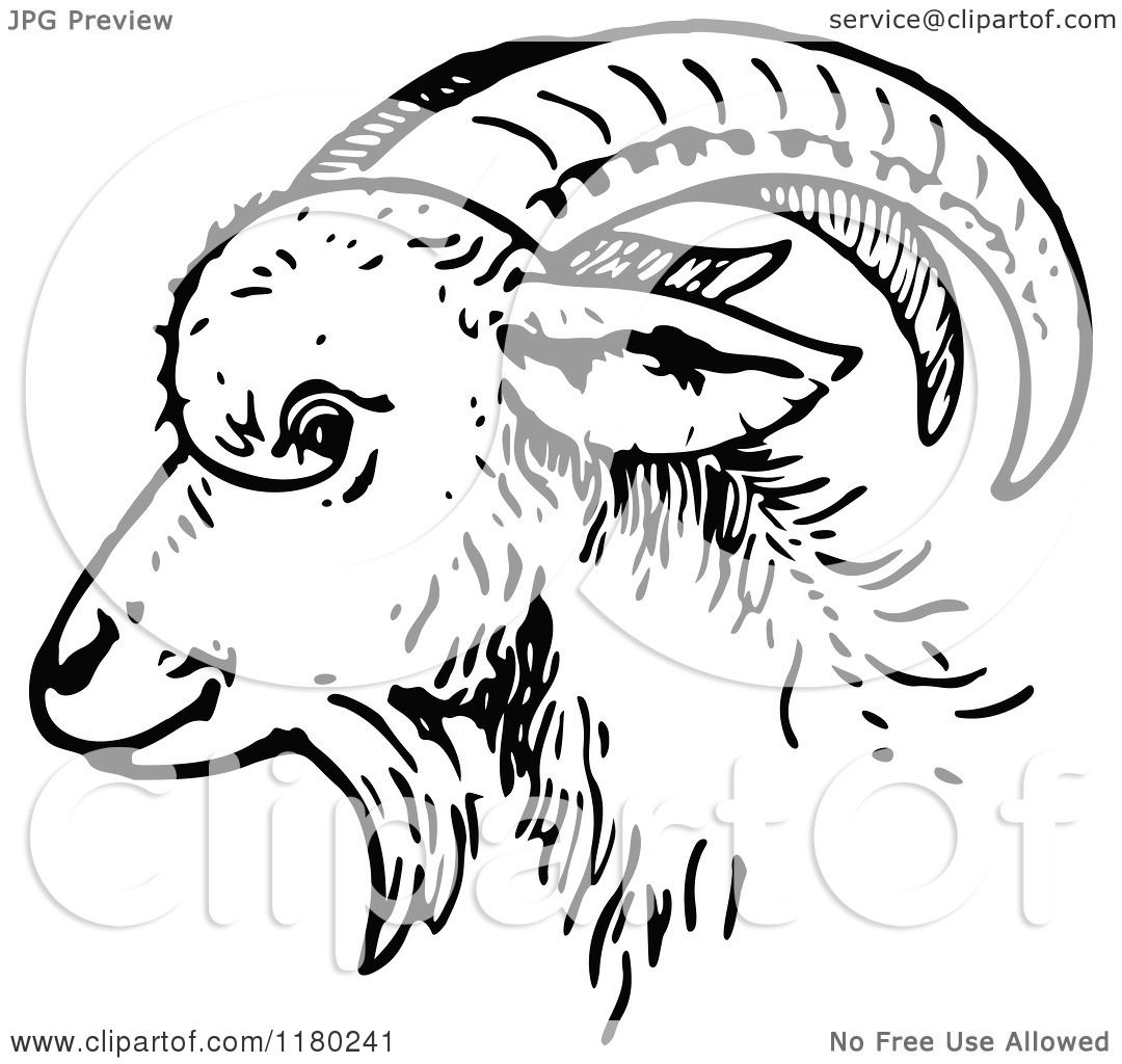Clipart of a Black and White Goat Head in Profile.