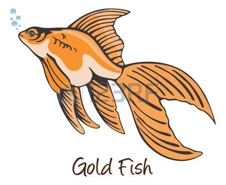 6,331 Gold Fish Cliparts, Stock Vector And Royalty Free Gold Fish.