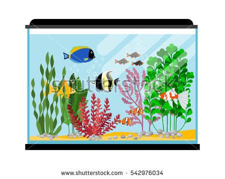 Goldfish Stock Images, Royalty.