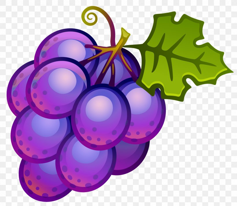 Common Grape Vine Clip Art, PNG, 2000x1741px, Wine, Blog.