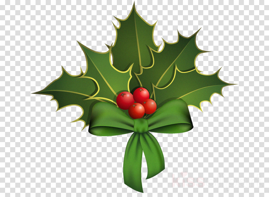 Holly clipart.