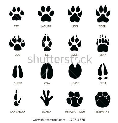 Footprint Stock Images, Royalty.