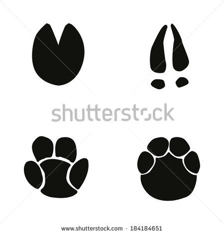 Elephant Footprint Stock Images, Royalty.
