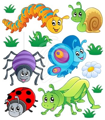 Insects cliparts.