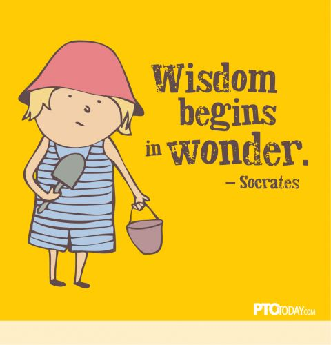 Wisdom begins in wonder.