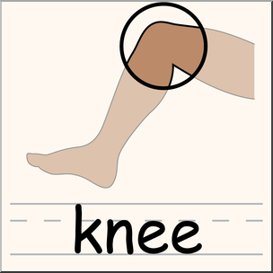 Clip Art: Parts of the Body: Knee Color I abcteach.com.