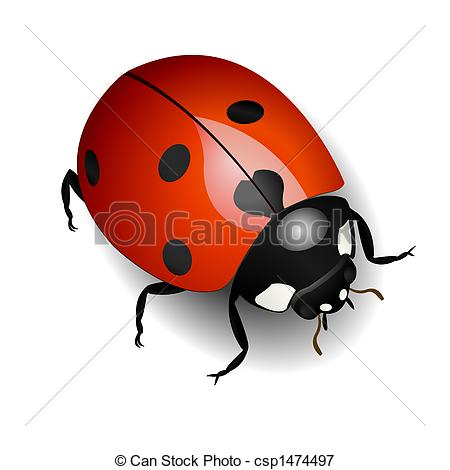 Ladybug Clip Art and Stock Illustrations. 11,570 Ladybug EPS.