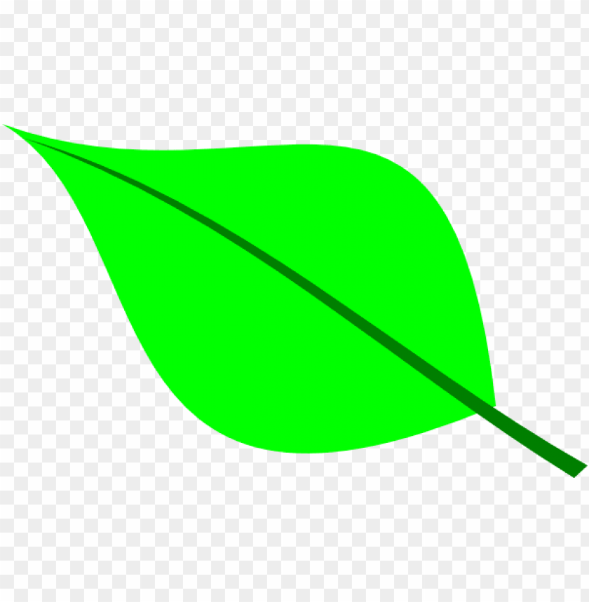 een leaf outline clipart.