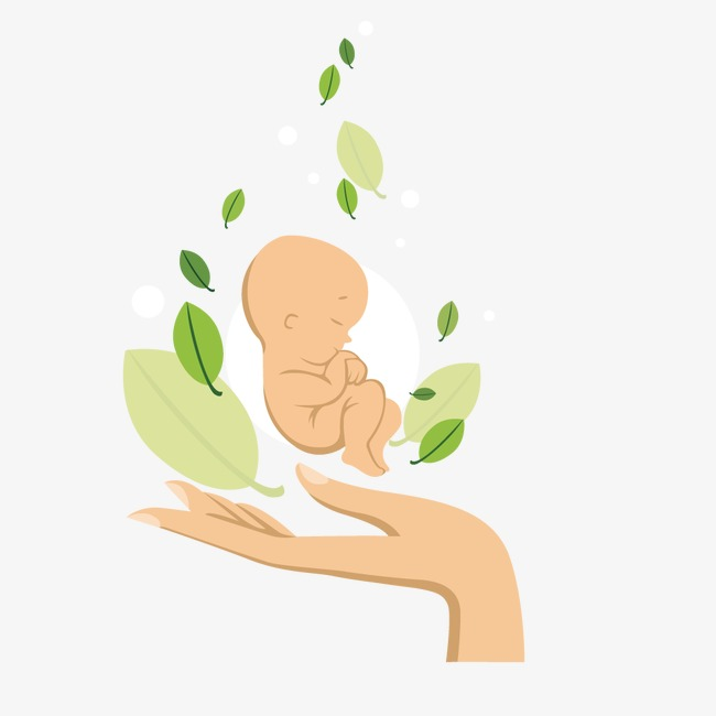 Vector Newborn Baby Clipart Gesture Action PNG And Unique Modest 13.