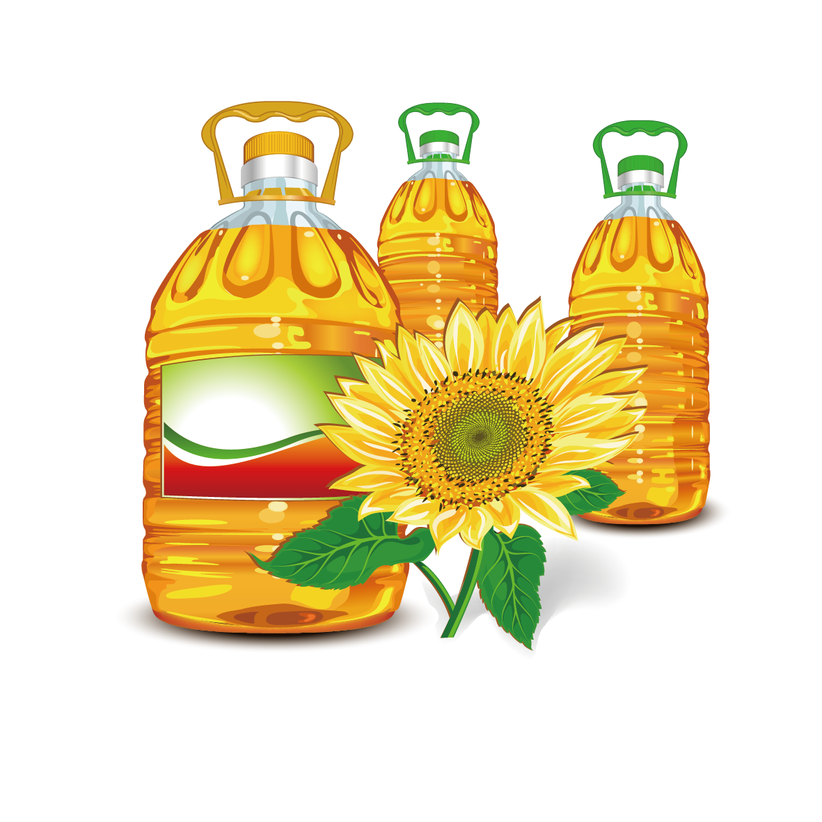 Nut clipart oil seed, Nut oil seed Transparent FREE for.
