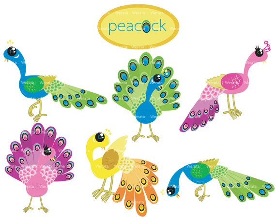 Baby Peacock Clipart.