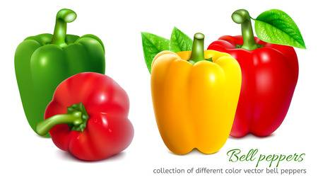 23,331 Green Pepper Stock Illustrations, Cliparts And Royalty Free.
