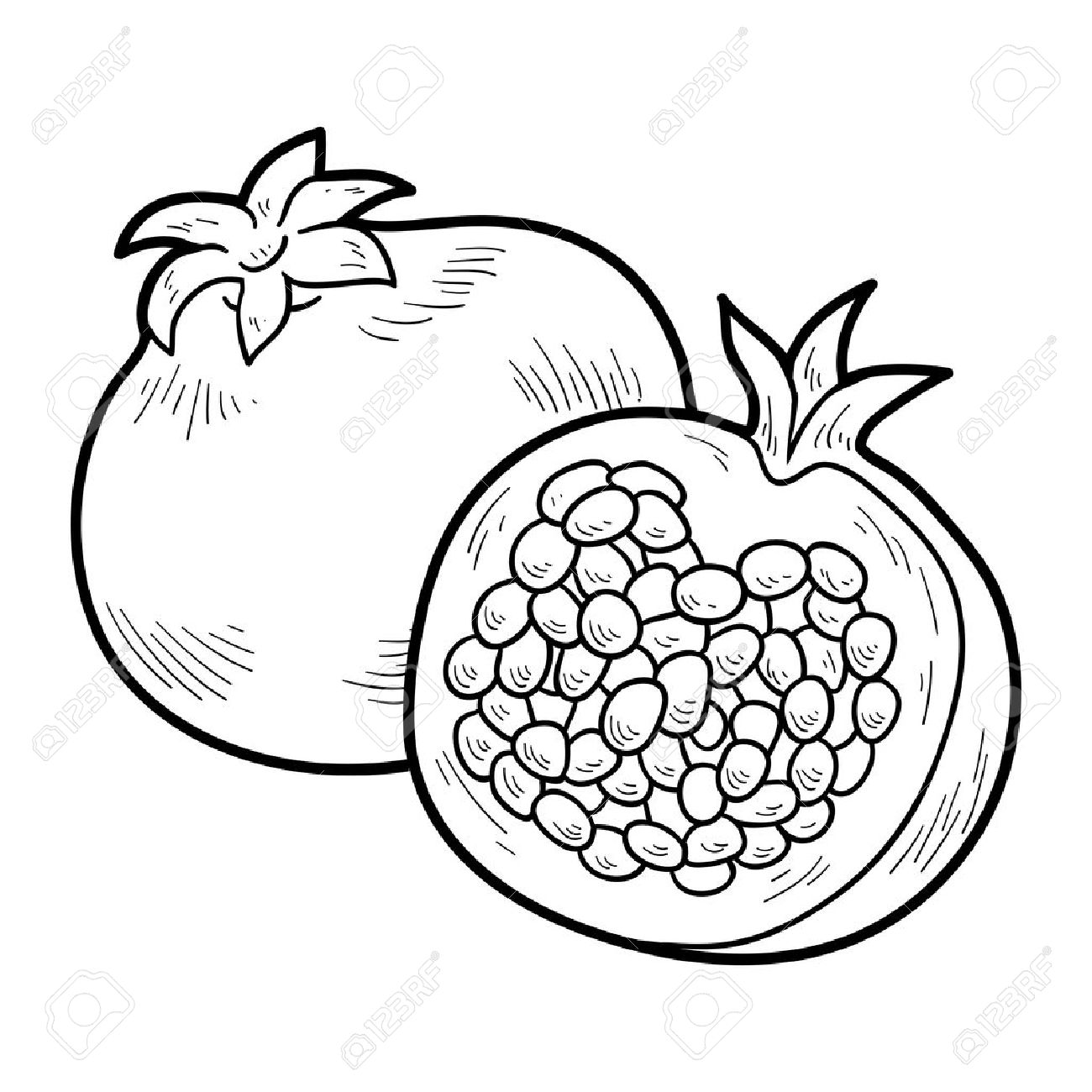 Pomegranate clipart black and white 10 » Clipart Station.