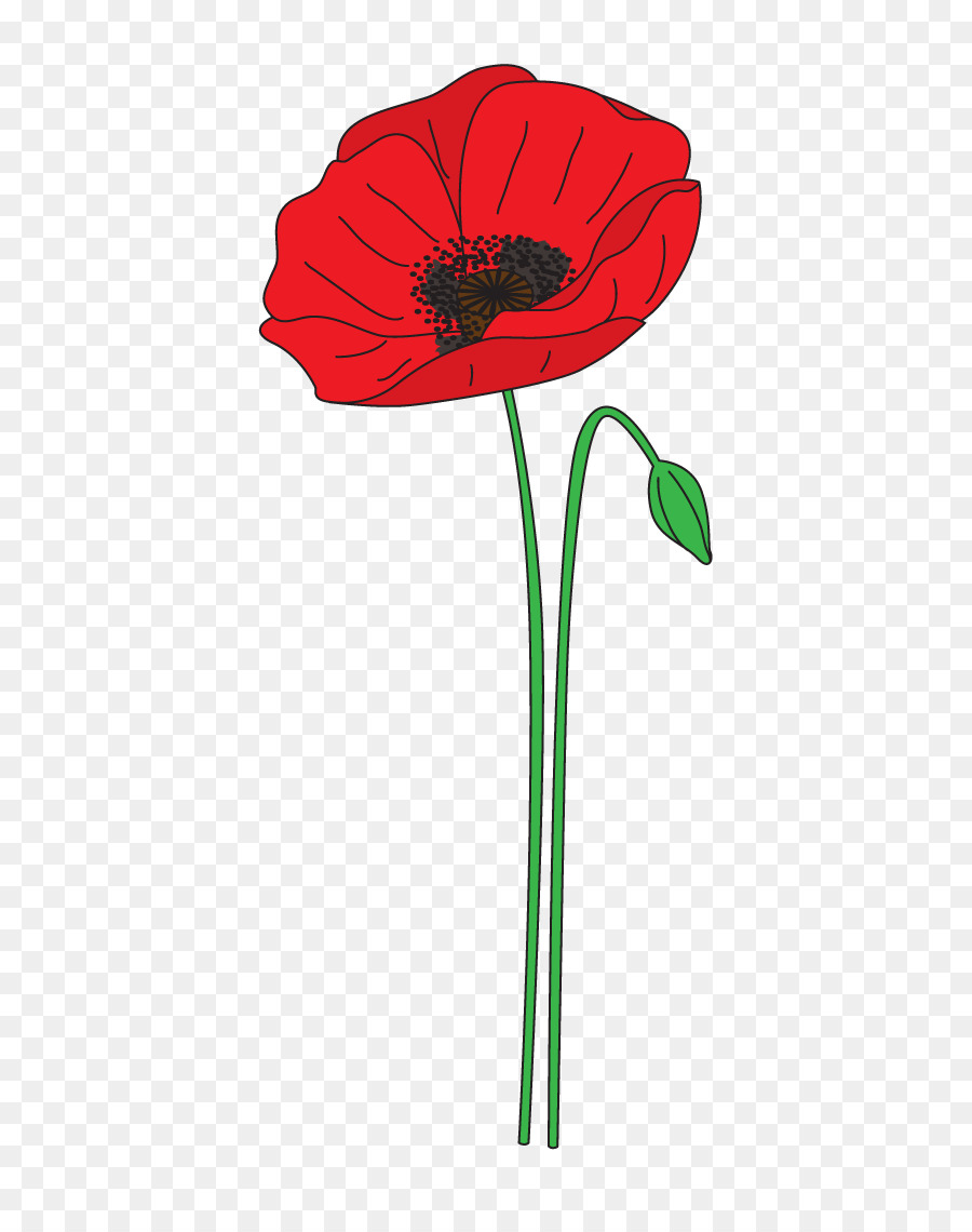 Remembrance Day Poppy clipart.