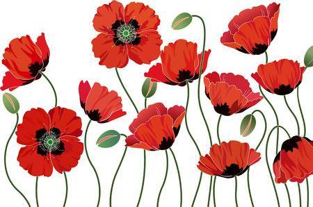 Clipart of poppies for remembrance day 3 » Clipart Portal.