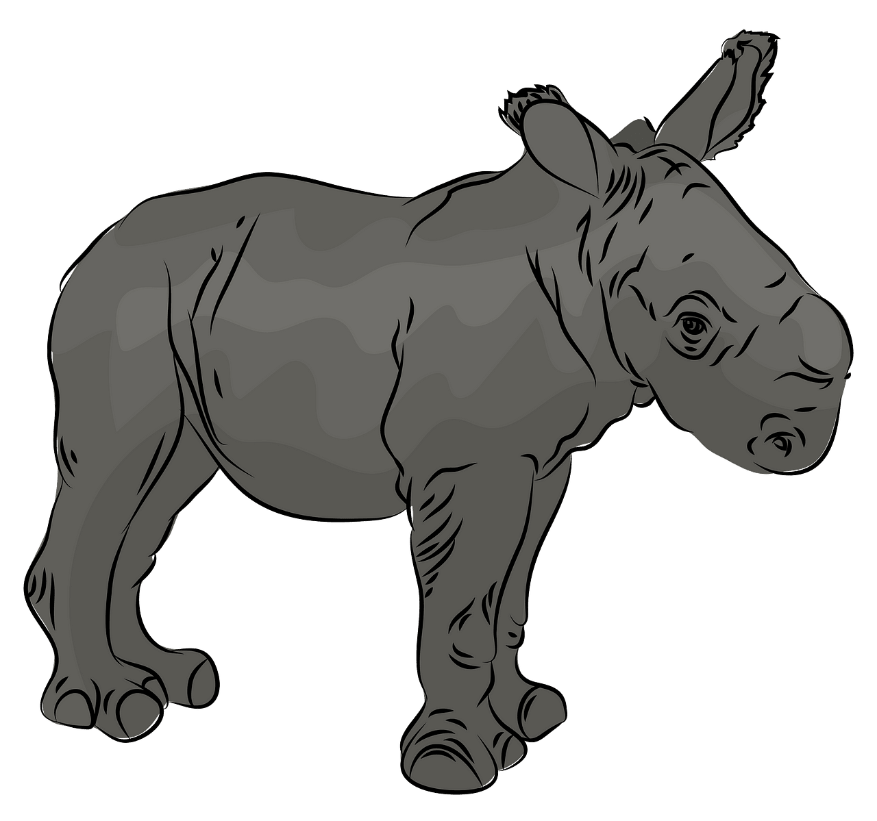 Rhino baby clipart. Free download..