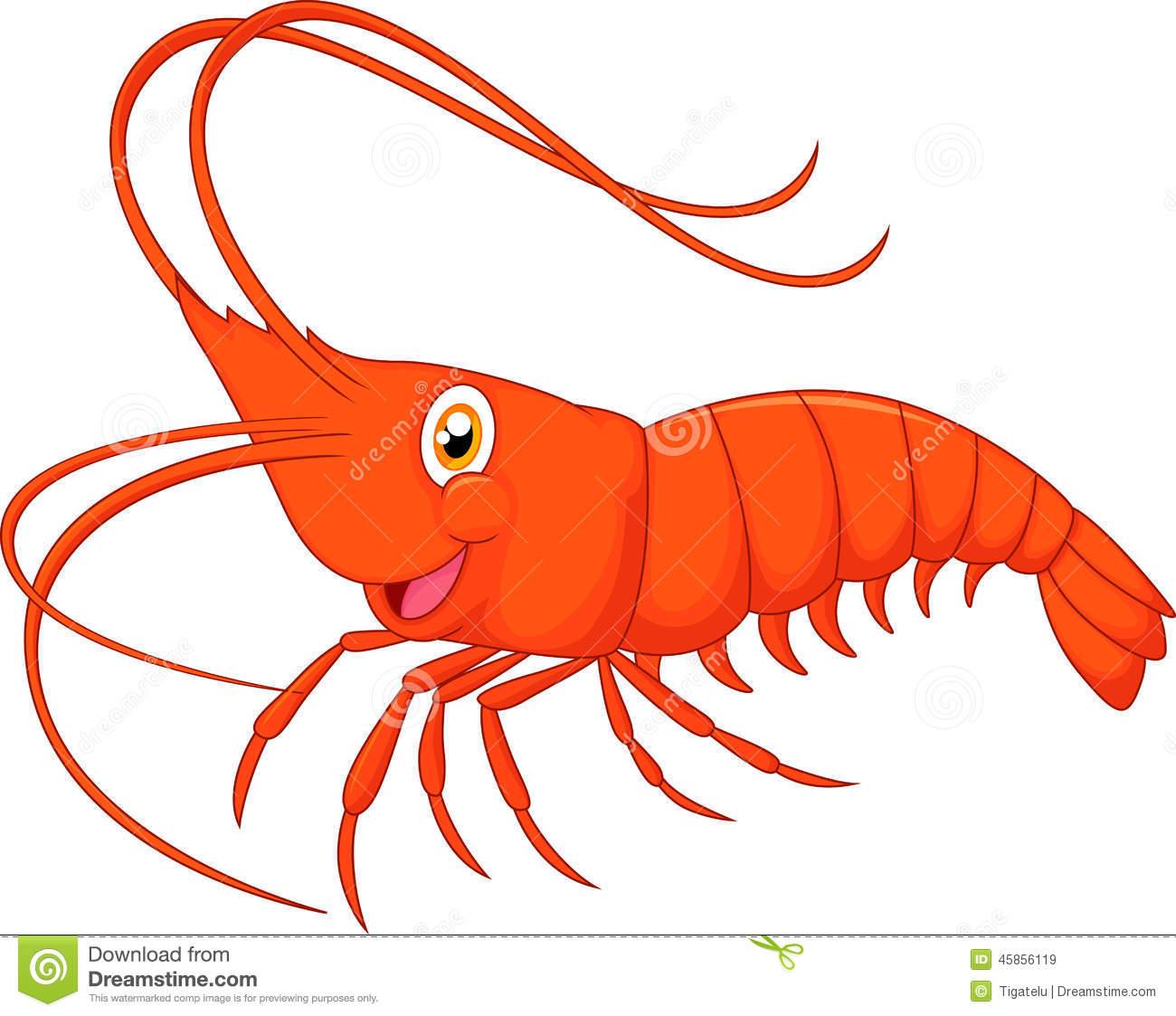 Shrimp Clipart & Shrimp Clip Art Images.