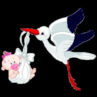 Stork Carrying Baby Girl.