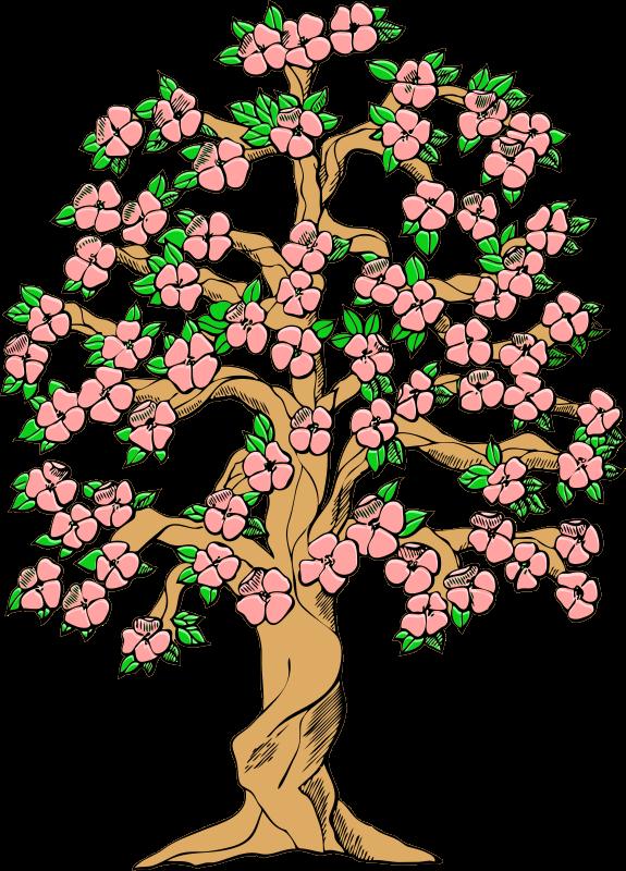 Old Tree in Spring.