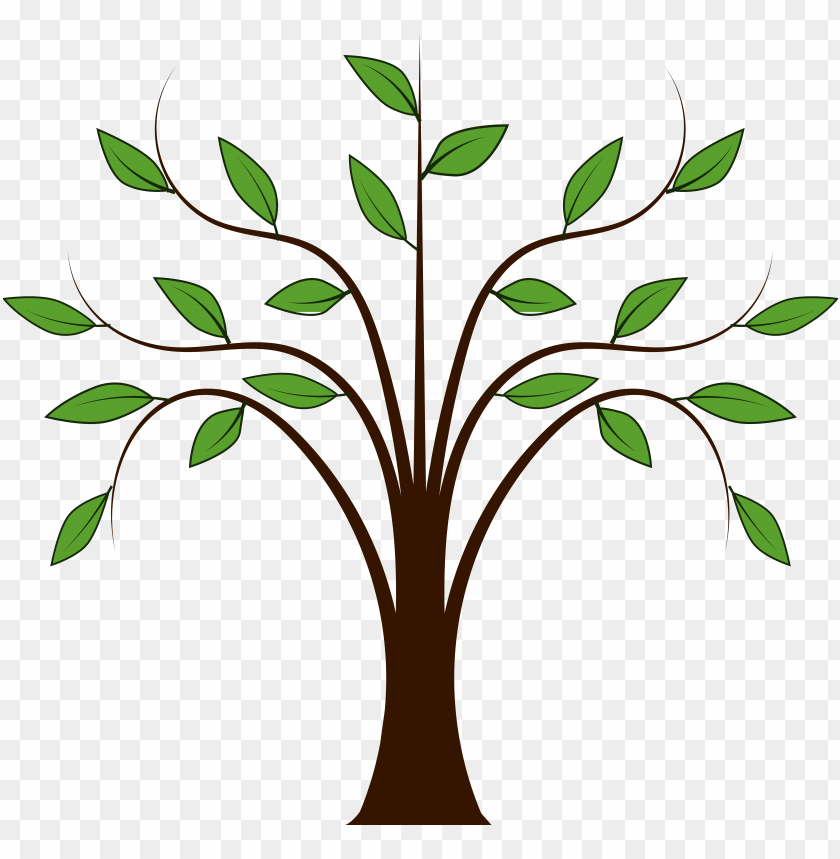 trees family tree clipart free images.