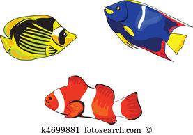 Tropical fish Clipart Illustrations. 10,390 tropical fish clip art.