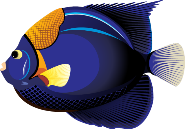 Tropical Fish Clipart.