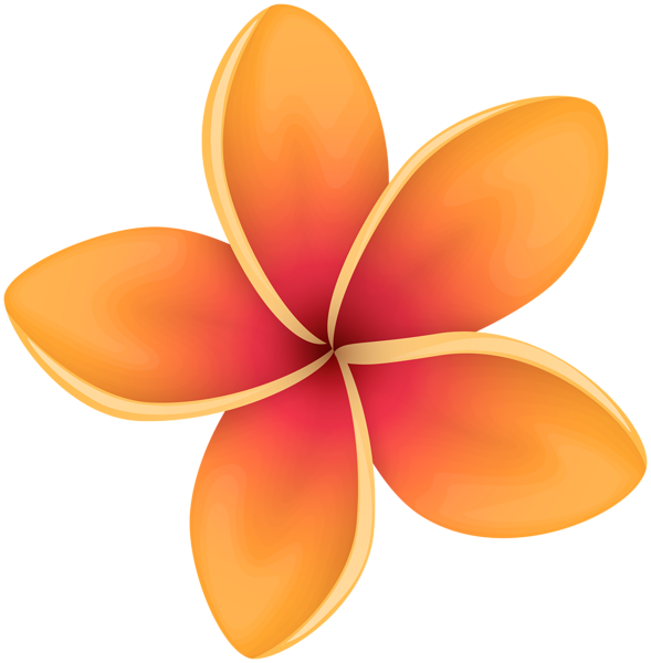 Orange Tropical Flower Clip Art Image Gallery Yopriceville.