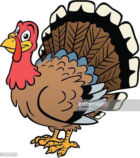 60 Top Wild Turkey Stock Illustrations, Clip art, Cartoons, & Icons.