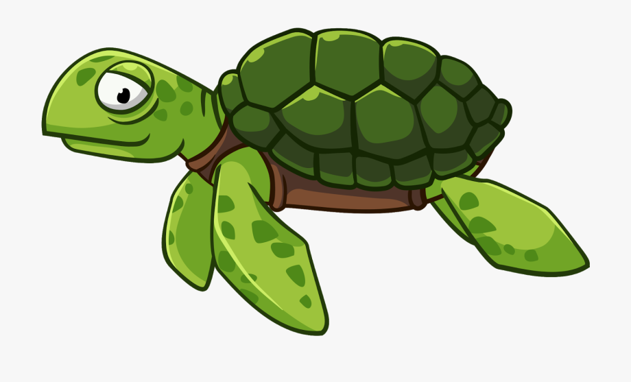 Green Turtle Cliparts.