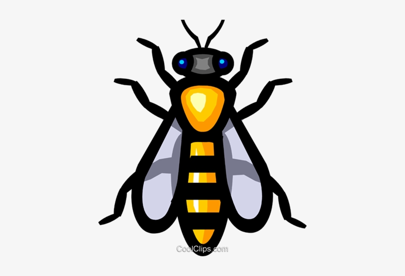 Symbol Of A Wasp Royalty Free Vector Clip Art Illustration.