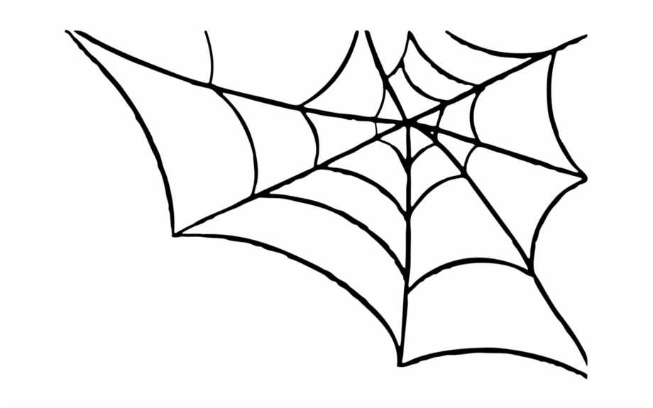 Library of clipart black and white library spiderweb png.