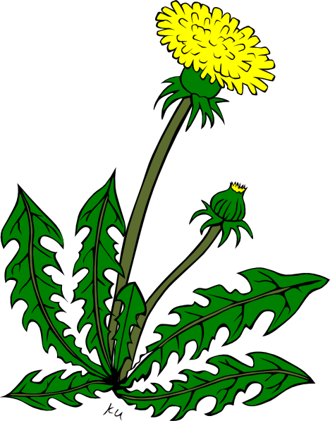 Free Weeds Cliparts, Download Free Clip Art, Free Clip Art.