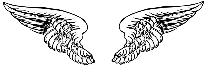 Advanced Wing 3 Clip Art, Wings Free Clipart.